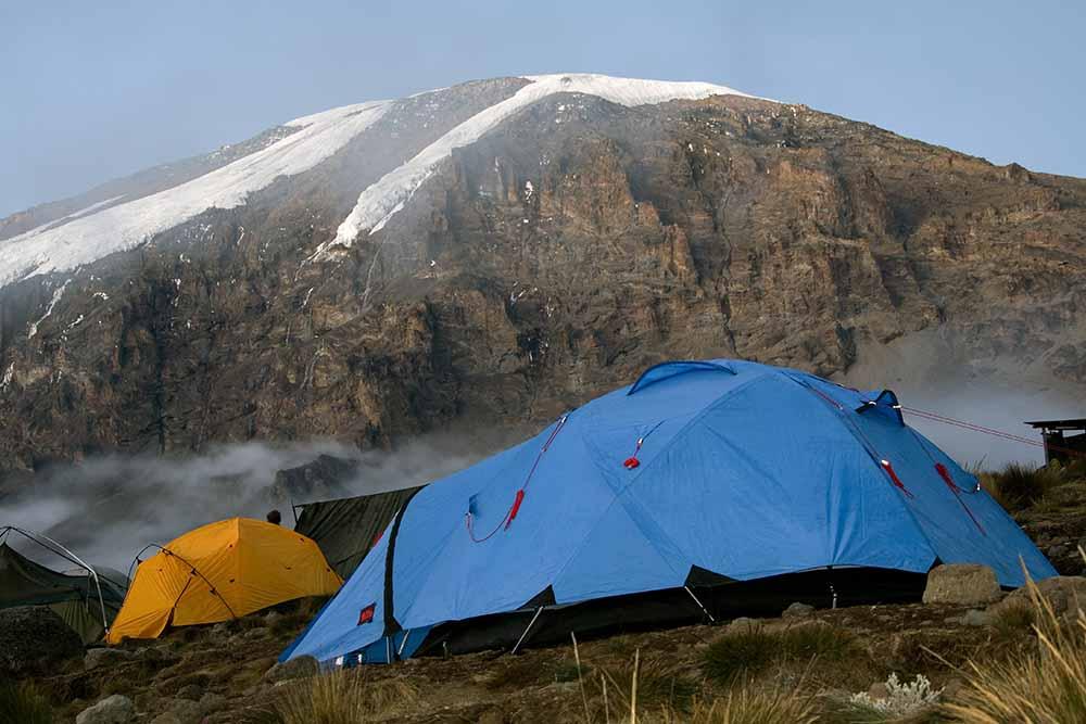 kilimanjaro 8